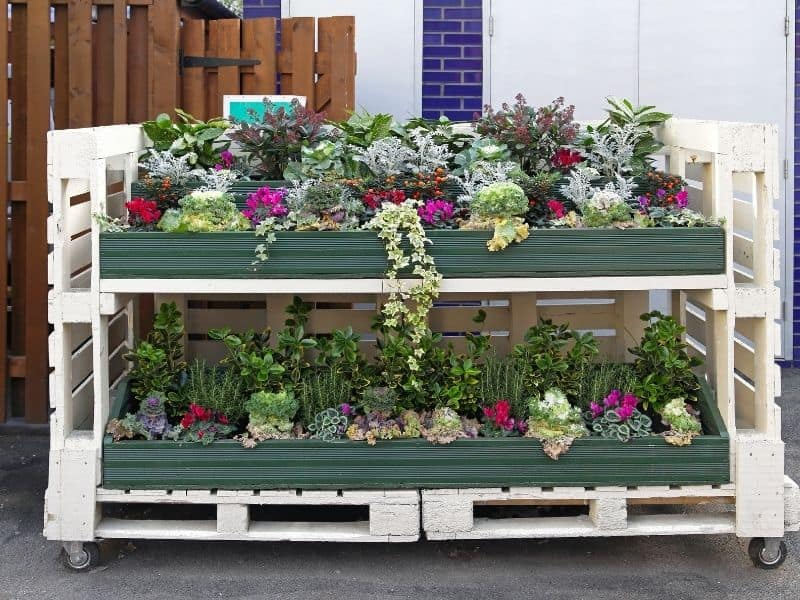 Raised bed garden made from pallets