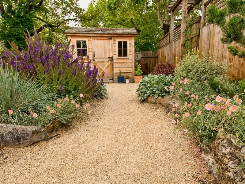 Path to a shed, surrounded by flowers on the side