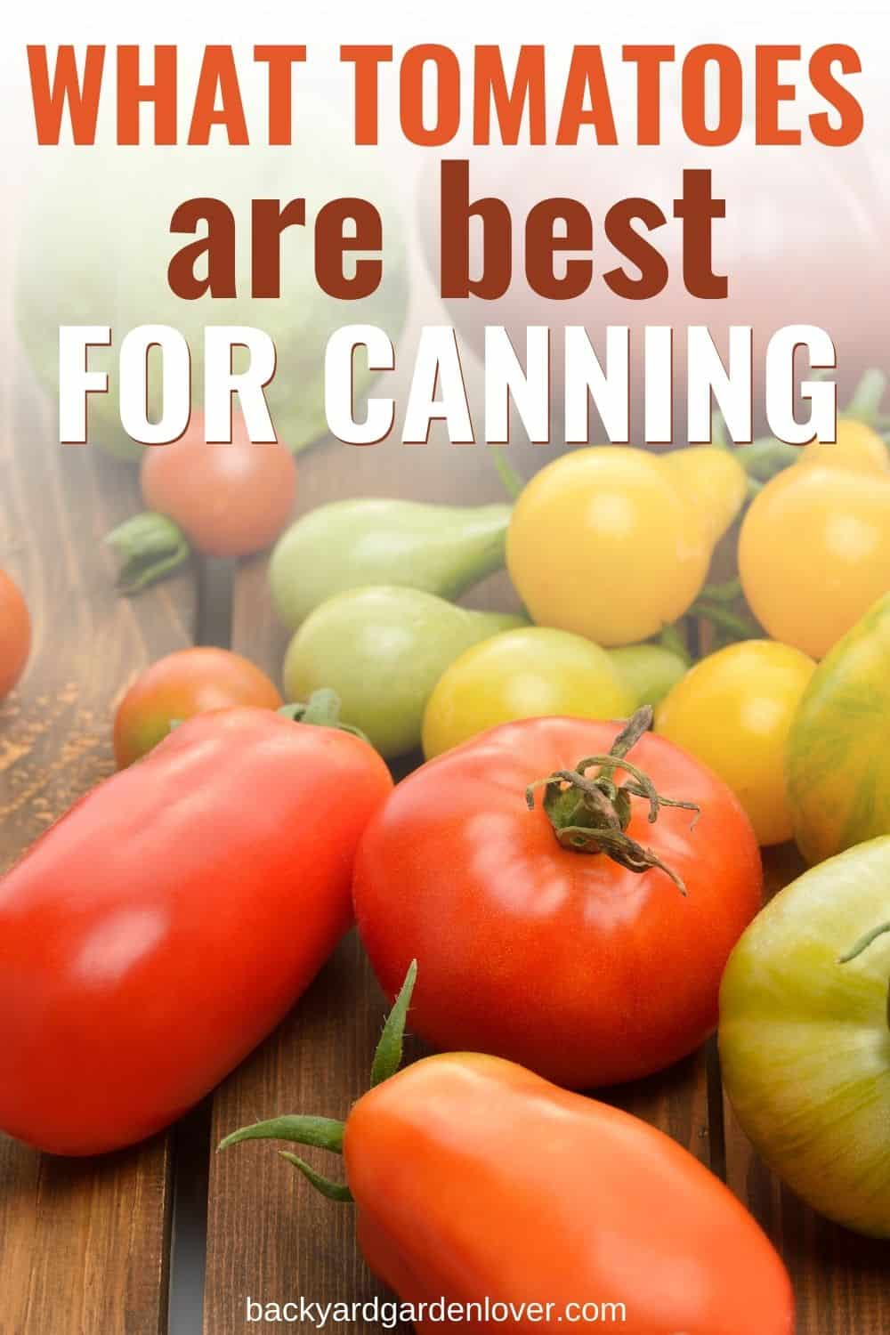 What tomatoes are best for canning - Pinterest image