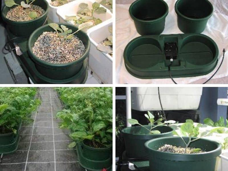 Wick hydroponic system setup