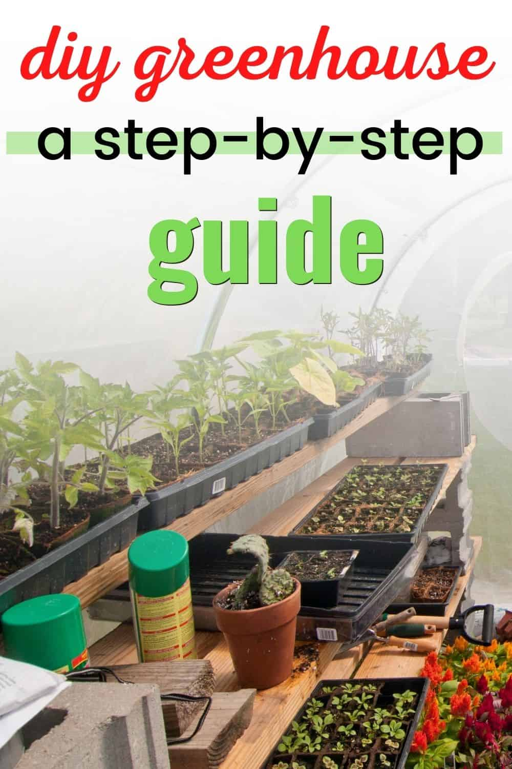 DIY Greenhouse - a step-by-step guide