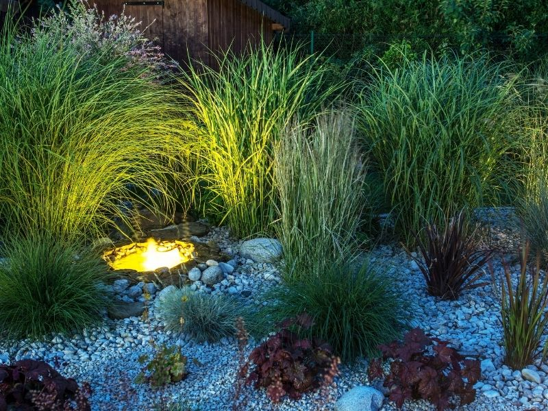 Garden light placed in between grasses