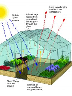 Diagram of how a greenhouse works