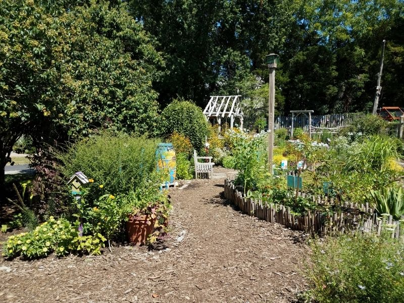 Mulch covered path in a big garden