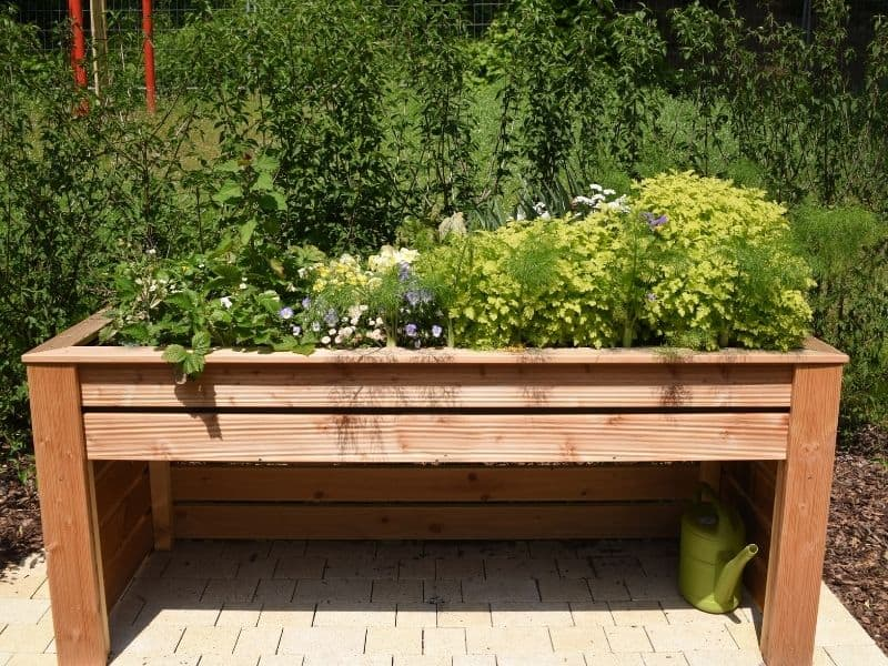 Raised bed with legs