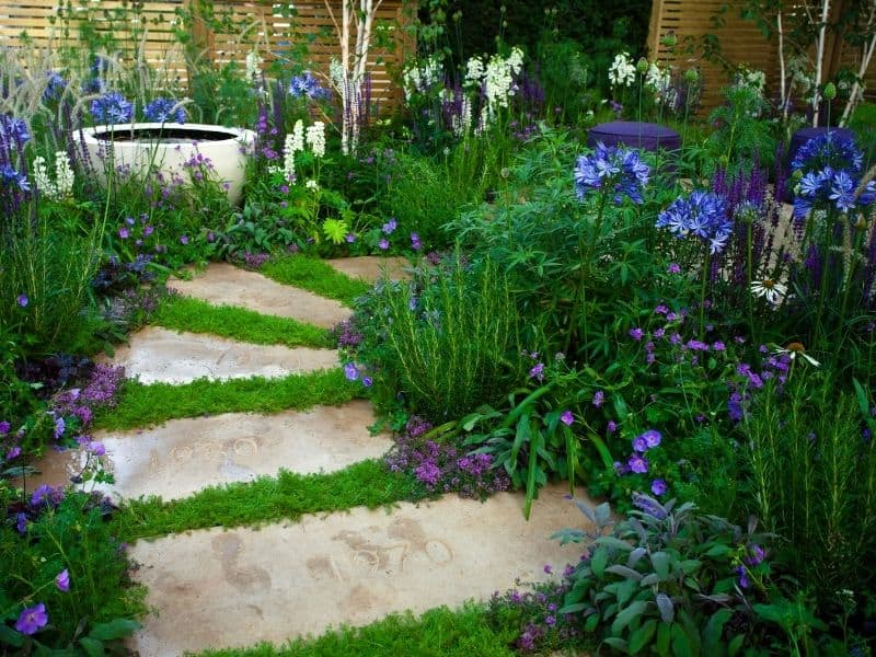 Stone garden path surrounded by blue, purple, and white flowers