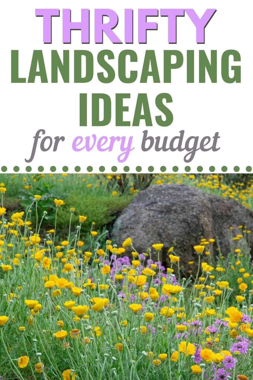 Thrifty landscaping ideas for every budget