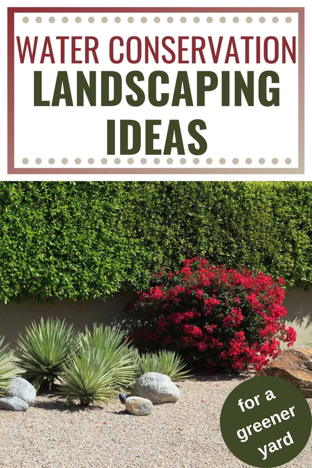 Water conservation landscaping ideas