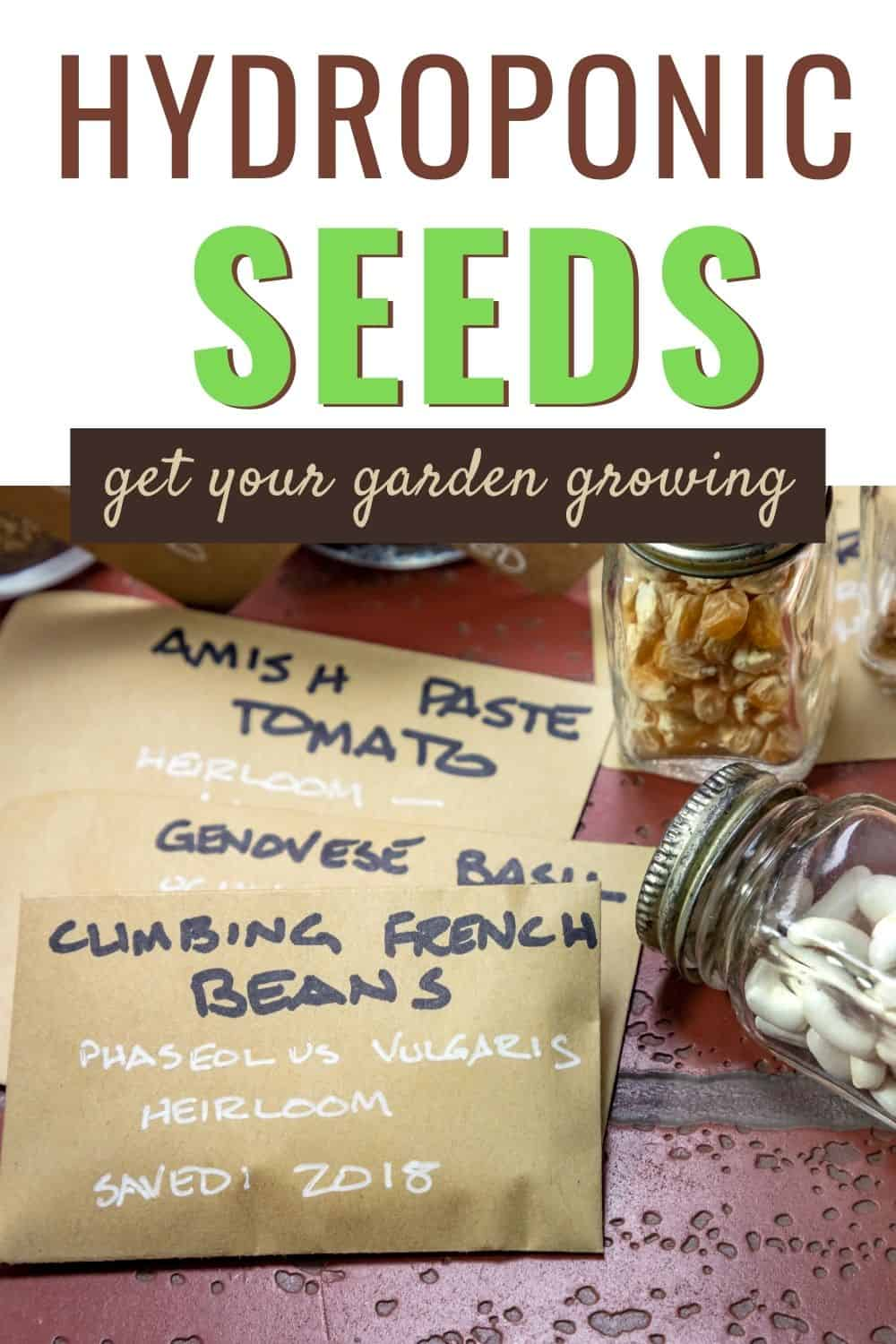 Hydroponic seeds to get your garden going