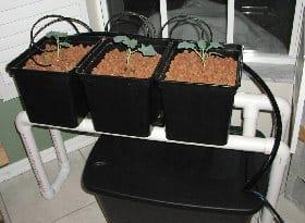 3-bucket top drip mini farm