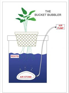 bucket bubbler diagram