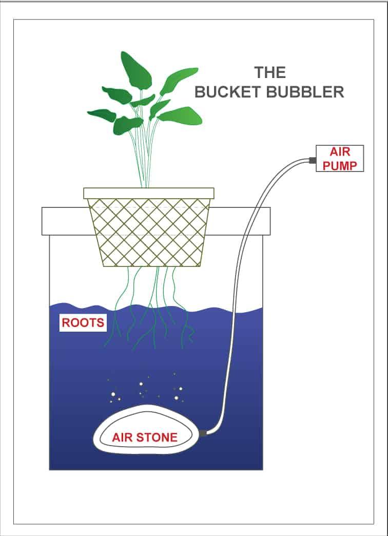 bucket bubbler diagram