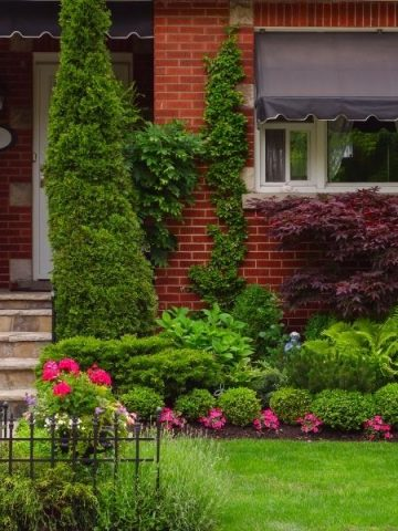 well manicured front yard landscape