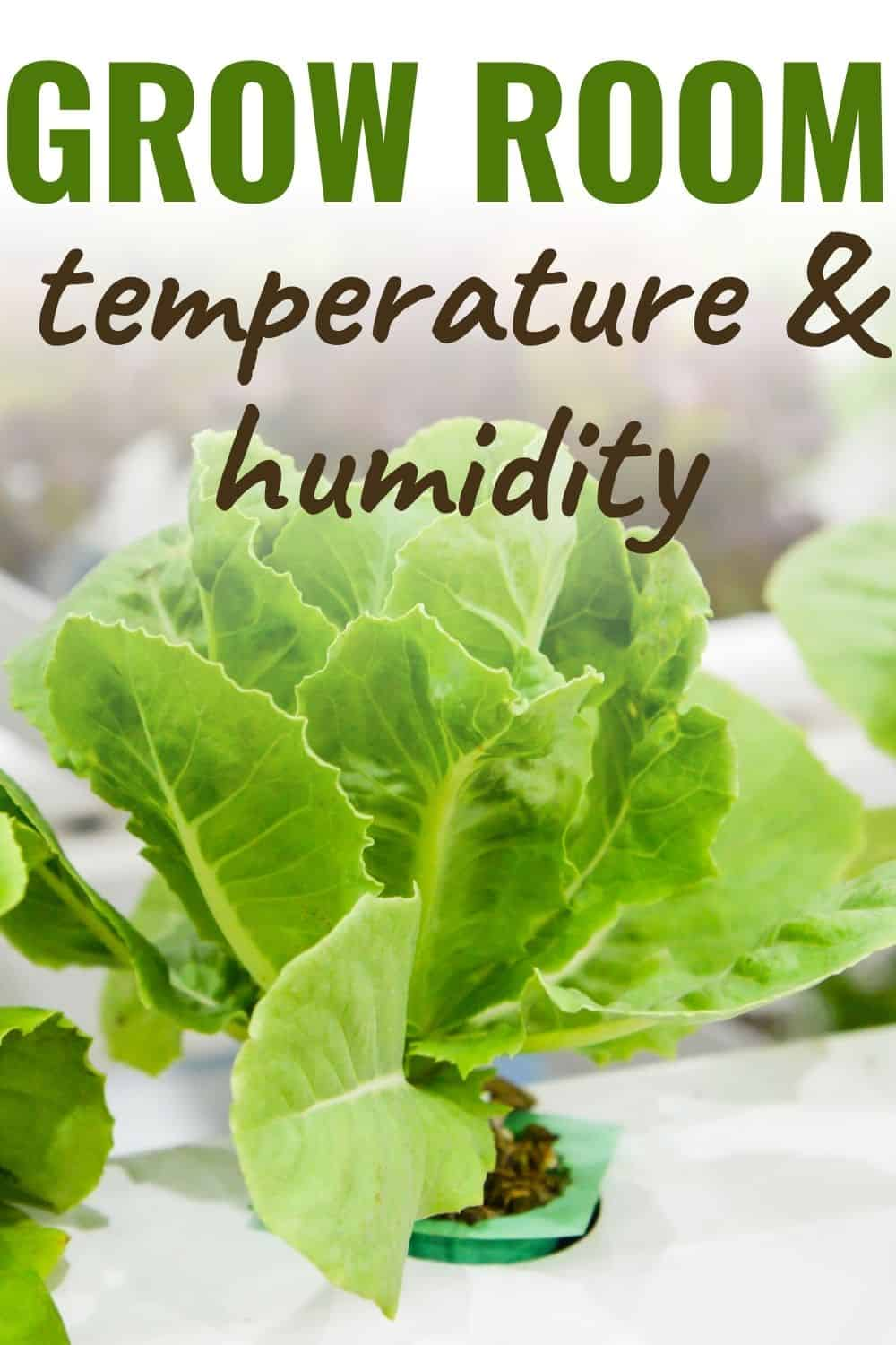 Grow room temperature and humidity