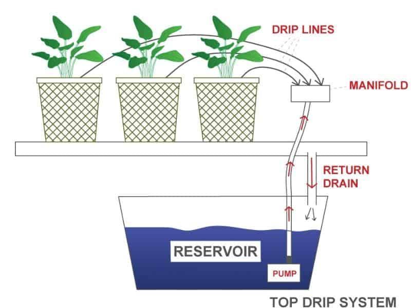 top drip hydroponic system diagram