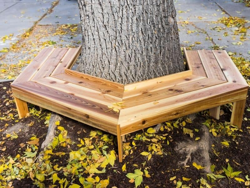 a wooden bench built around a tree