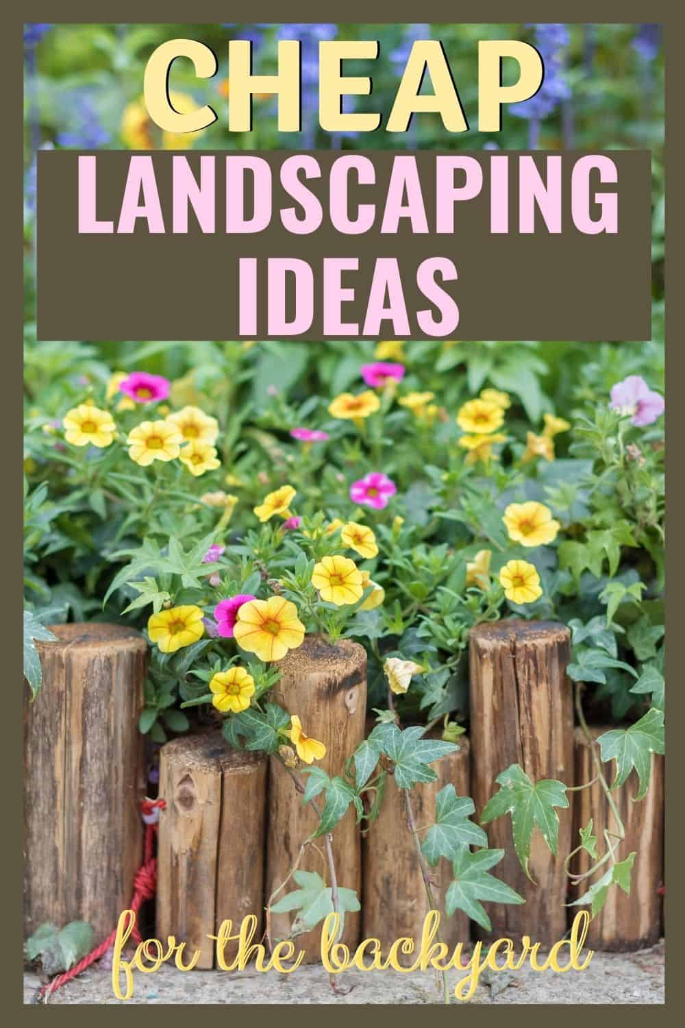 Cheap landscaping ideas for the backyard