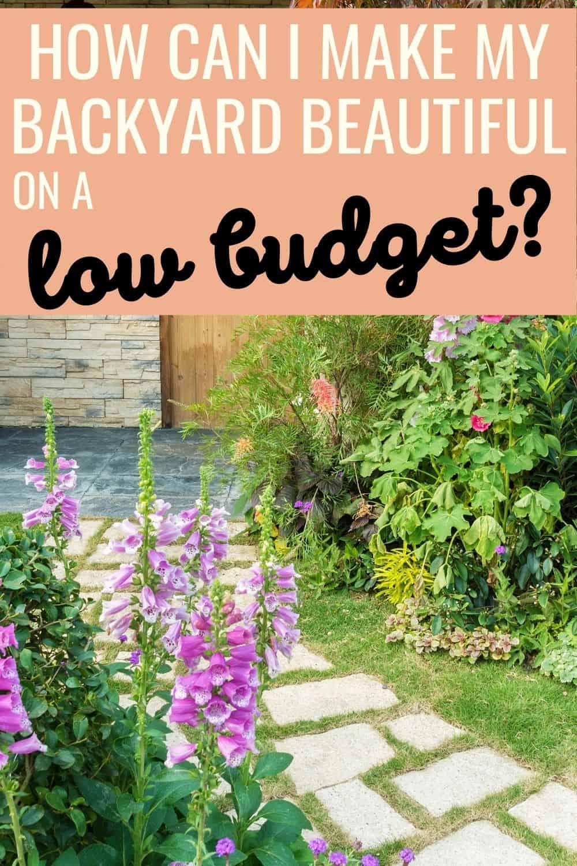 How can I make my backyard beautiful on a low budget