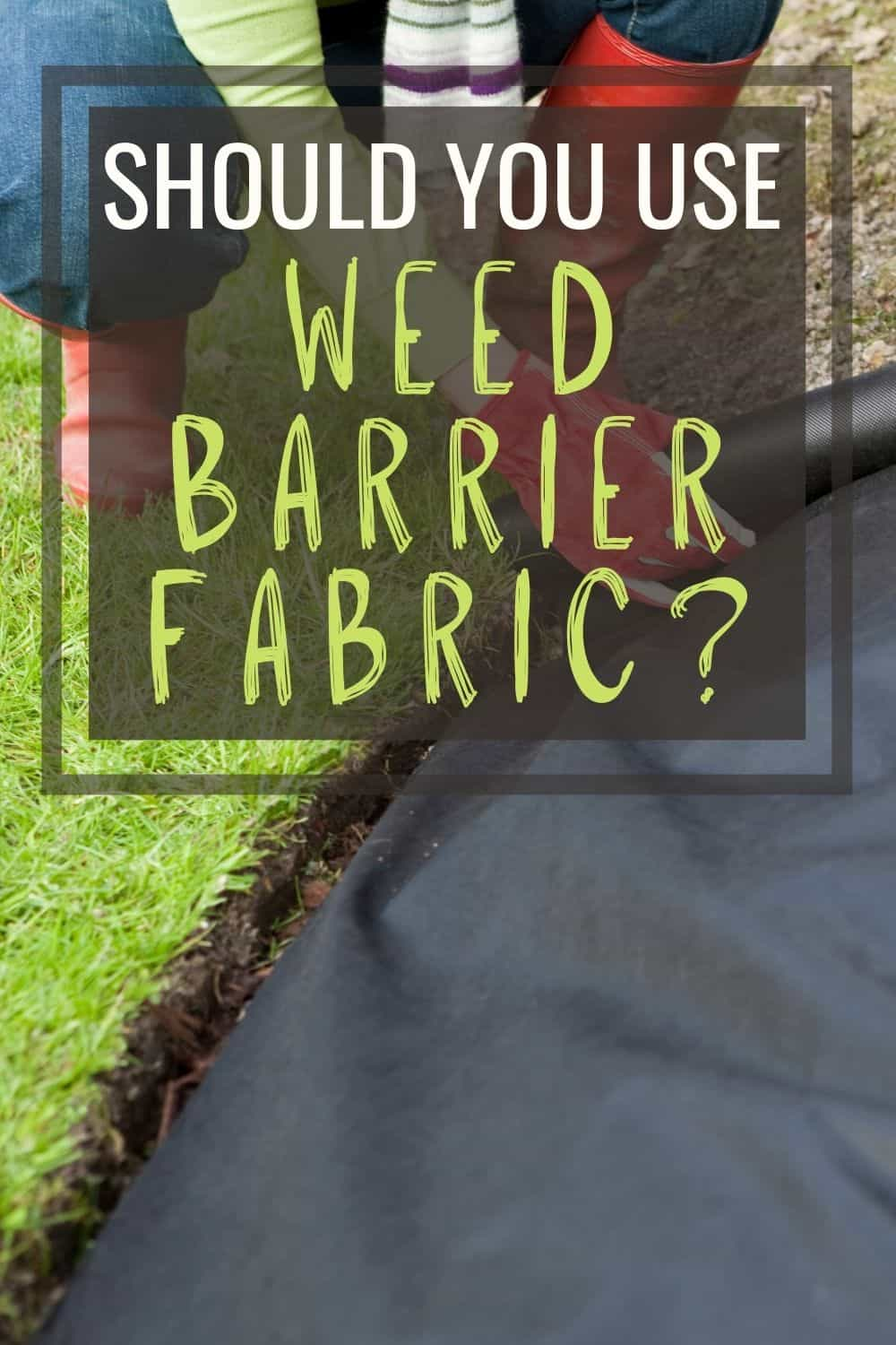 Should you use weed barrier fabric?