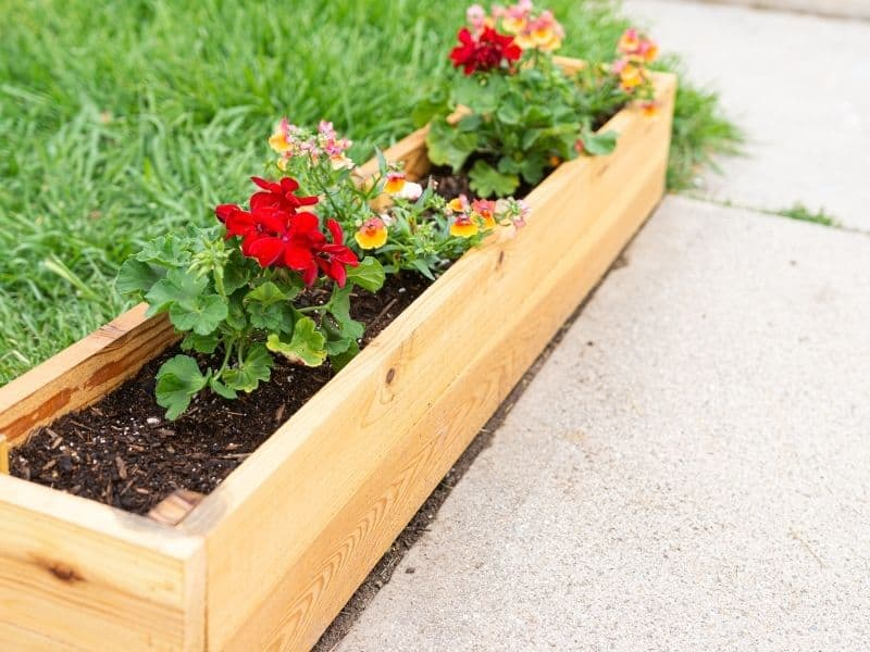wooden planter with flowers sitting on the sidewalk