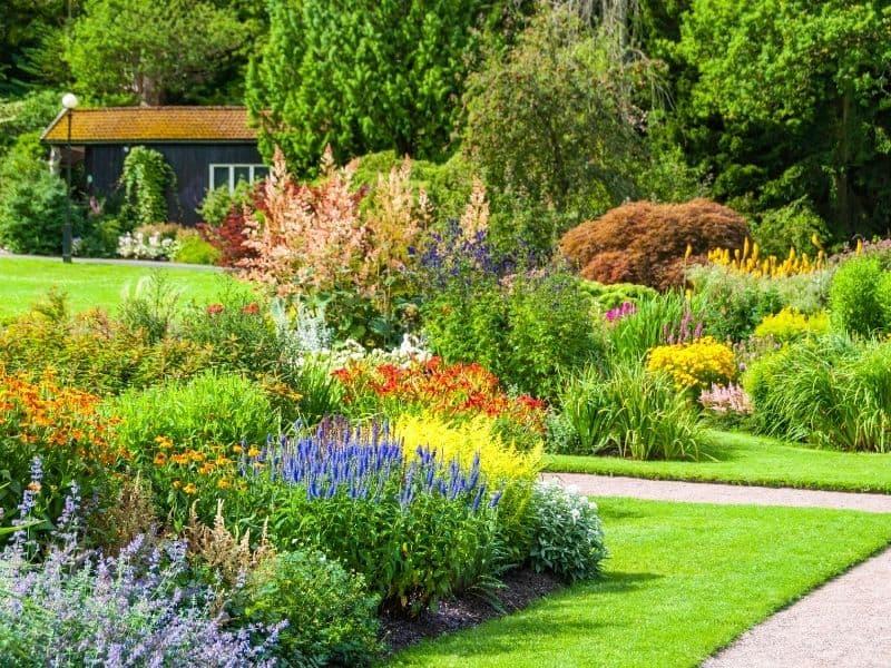 beautifully manicured front yard landscape
