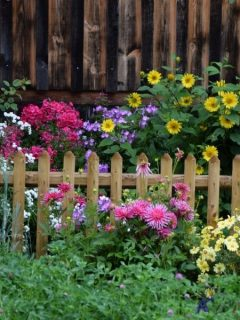 fenced in flower garden