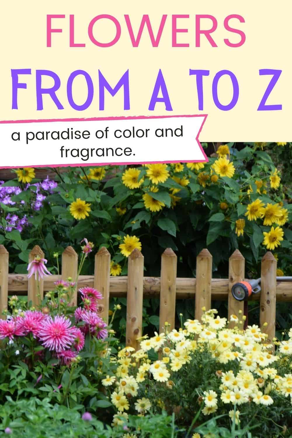 Flowers from A to Z - a paradise of color and fragrance
