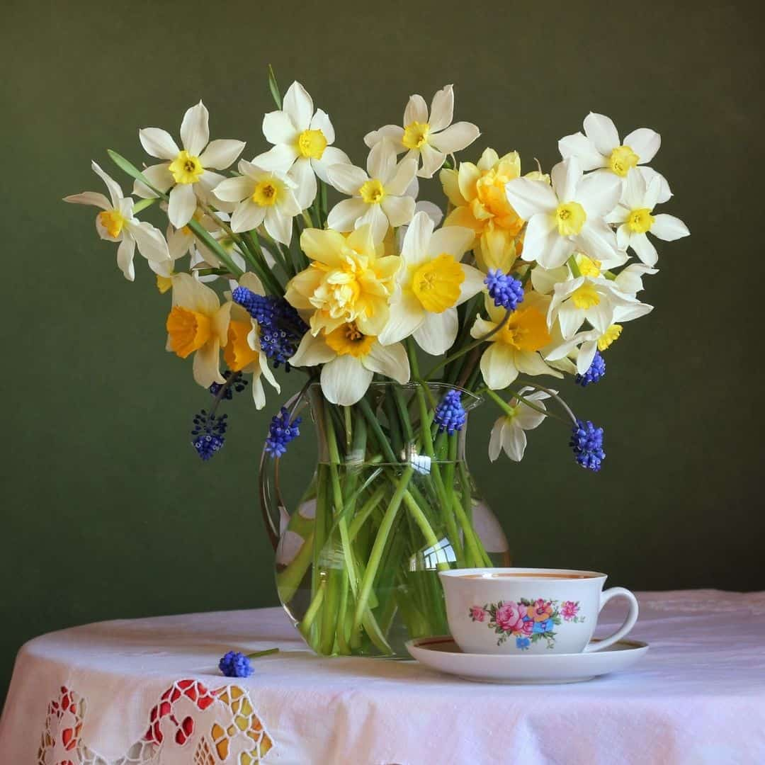 Spring daffodils bouquet