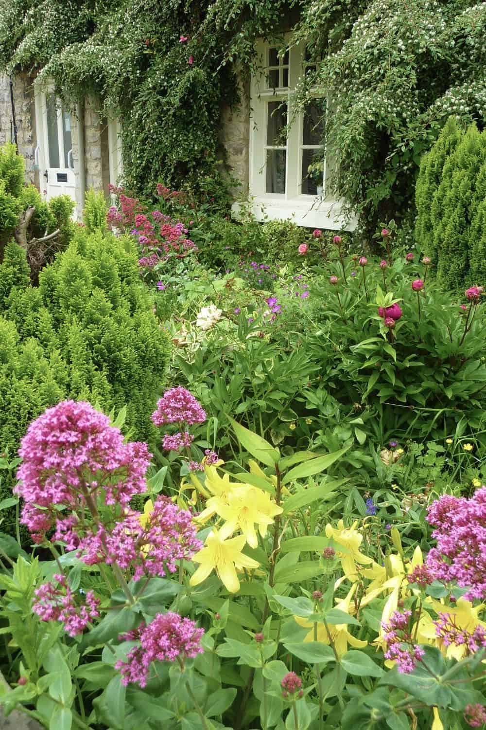 beautiful flower garden with a cottage feel