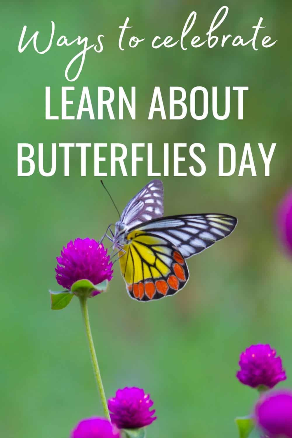 Ways to celebrate learn about butterflies day
