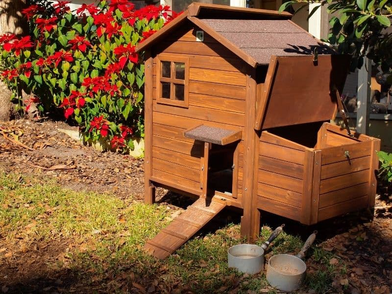 Beautiful wooden chicken coop