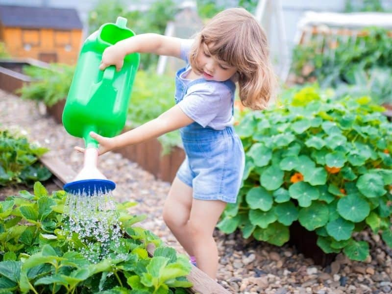 yourng girl watering the garden