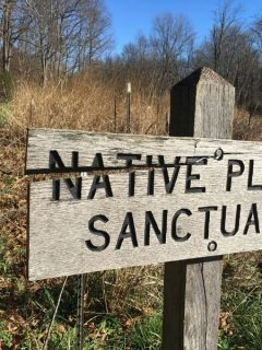 sign that says native plant sanctuary