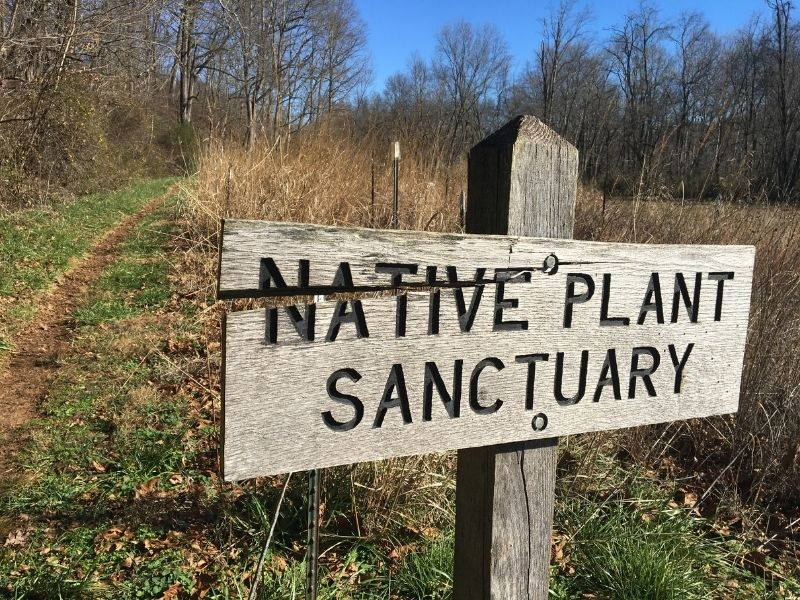 sign that says native plant sanctuary