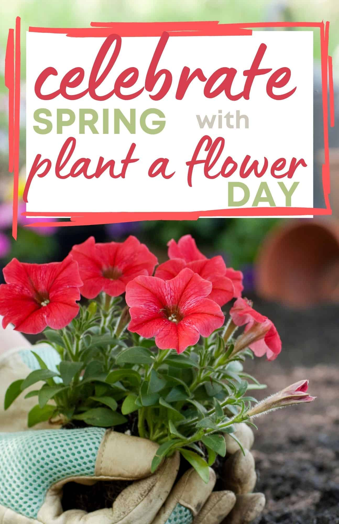 Celebrate spring with Plant a Flower Day