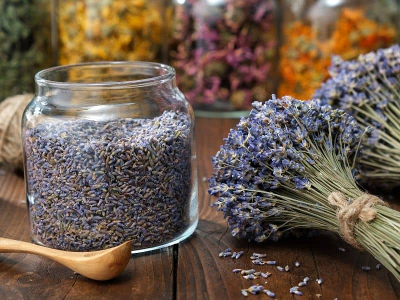 glass jar filled with dry lavender
