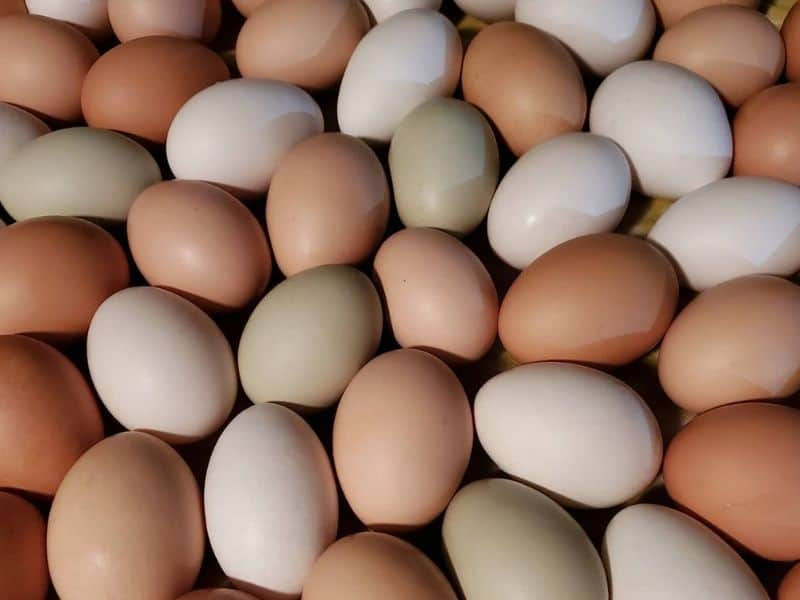 a big pile of colorful eggs