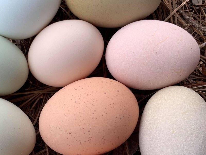 beautiful pink eggs