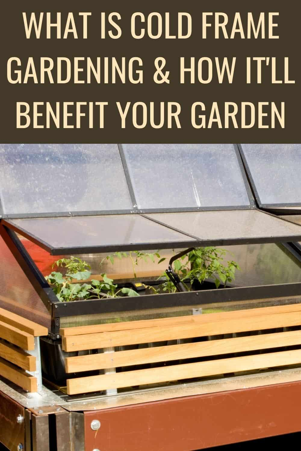 What is cold frame gardenign and how it will benefit your garden