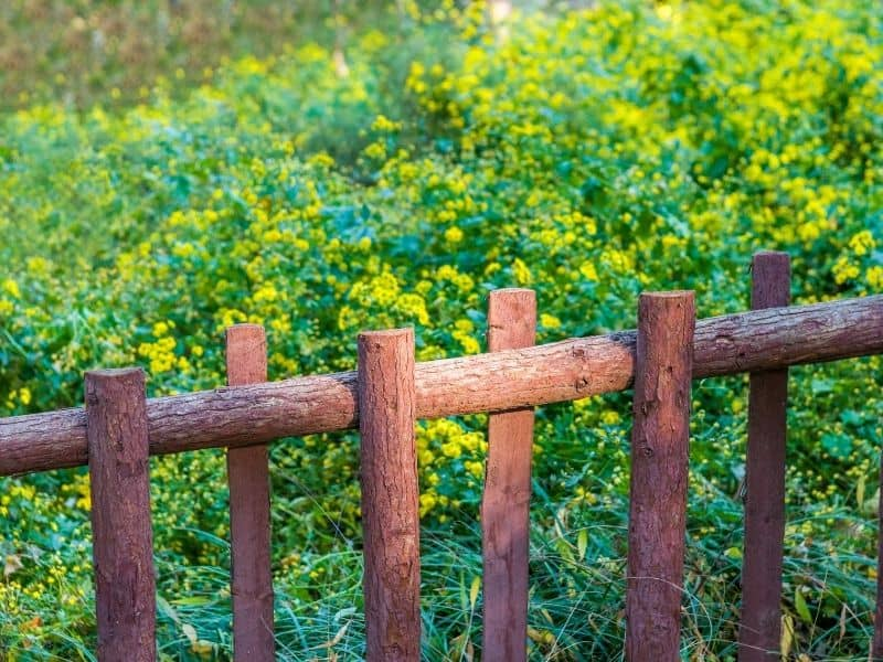 wooden logs fence