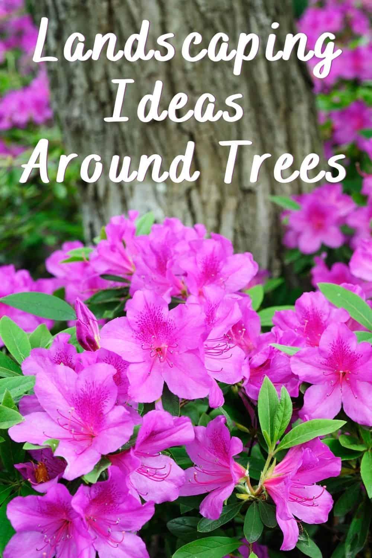 landscaping ideas around trees