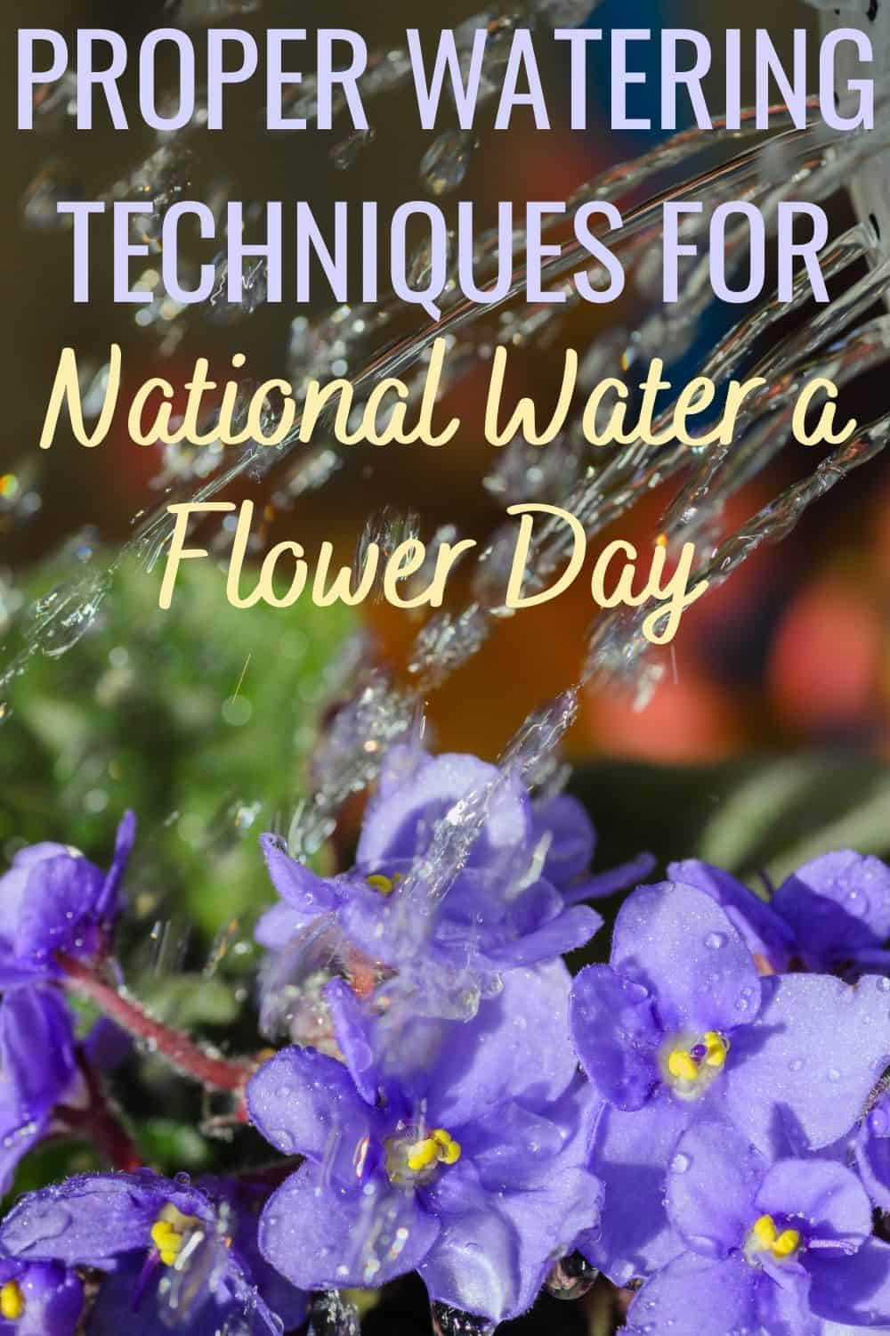 Proper Watering Techniques for National Water a Flower Day