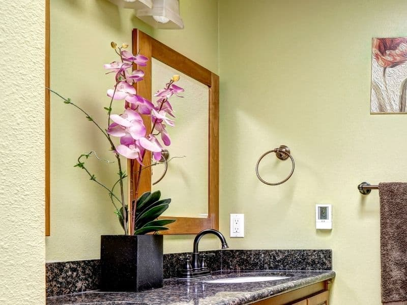 orchid flower in the bathroom