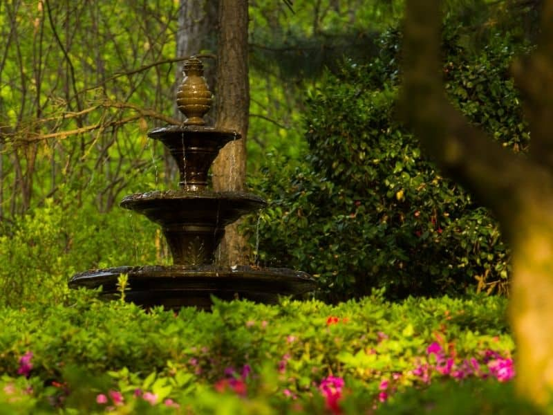 a water fountain under a tree surrounded by flowers