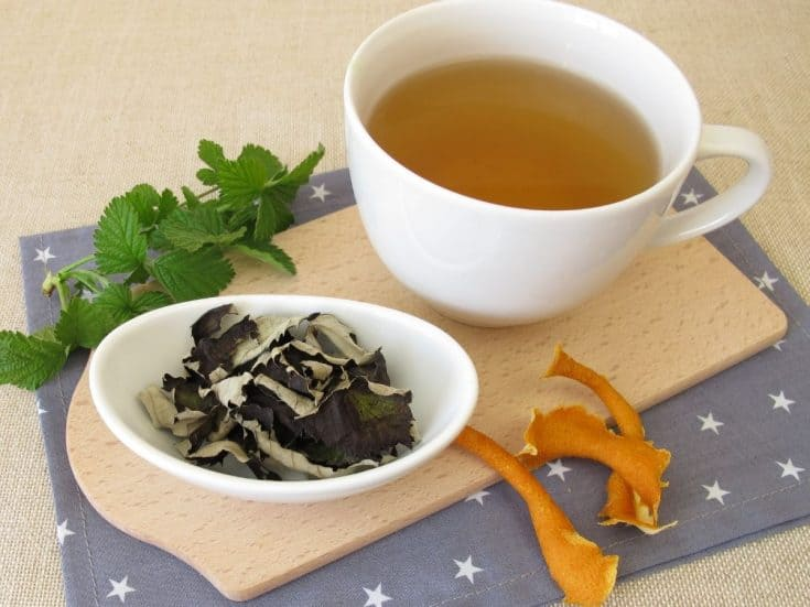 a cup of blackberry leaf tea and a plate with dried blackberry leaves