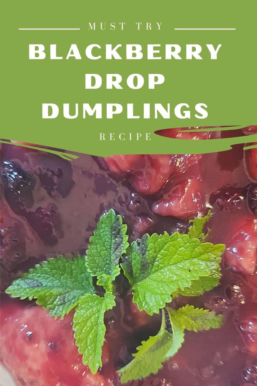 blackberry drop dumplings recipe