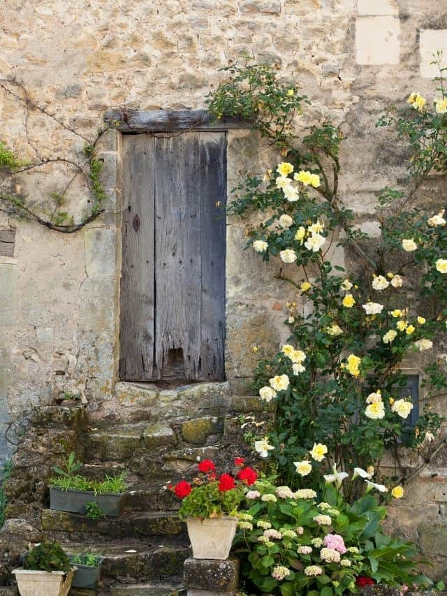 cotttage entrance with yellow roses