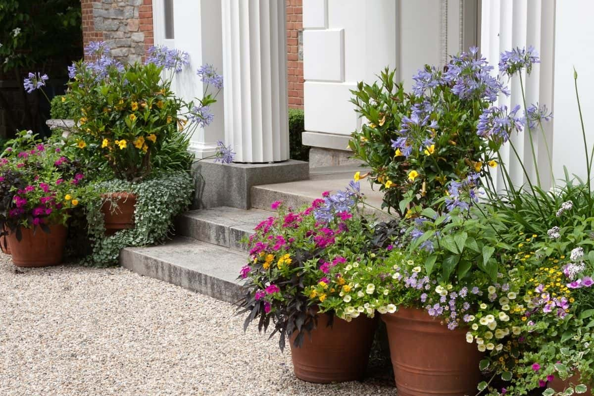 front entrance decorated with pebbles and potted flowers