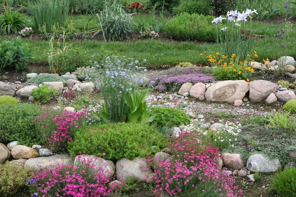 hillside garden with colorful flowers and river rocks in between