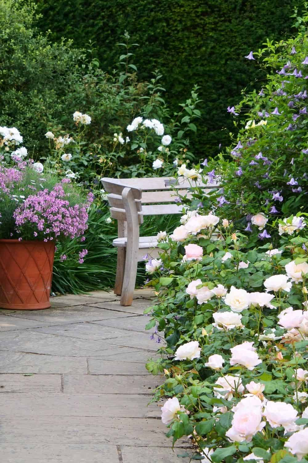 Beautiful spot created by landscaping with roses